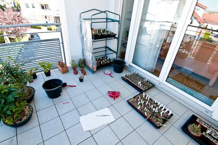Umräumen auf dem Balkon