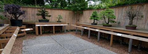Bonsaigarten im blühenden Barock