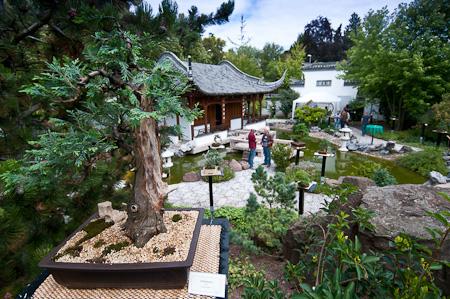 chinesischer vorgarten – actof, Terrassen ideen