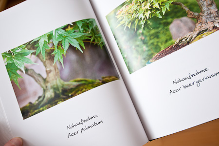 Blick in das Fotobuch