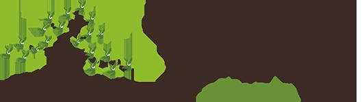 Bonsai-Pflege und Baum-Gestaltung als Hobby - Die Kunst kleine Bäume in einer Schale ästhetisch zu präsentieren