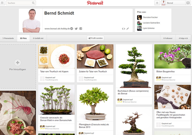 Bonsai auf Pinterest