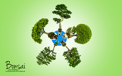 Bonsai Mini Planet zum download als Wallpaper
