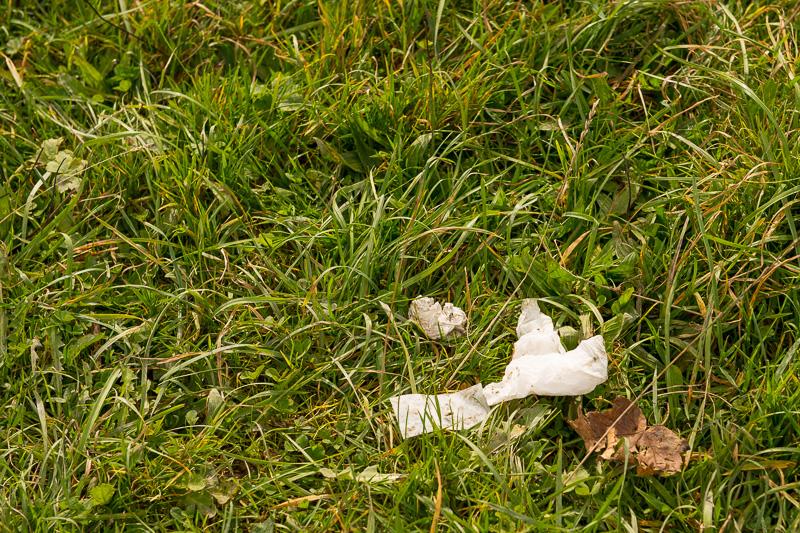 Abfall im Naturschutzgebiet