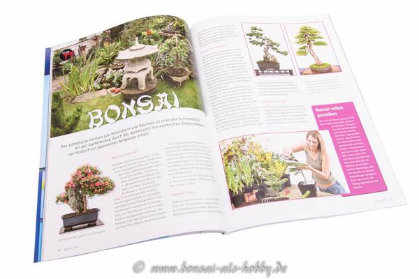Fachartikel über Bonsai