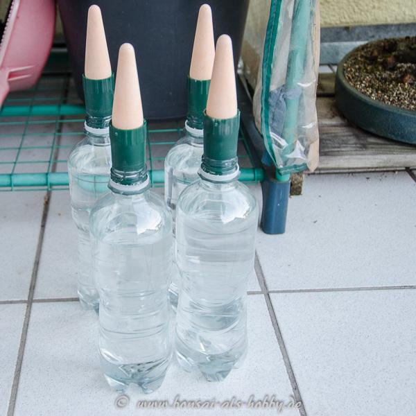 Bewässerungskegel aus Ton mit Wasserflaschen