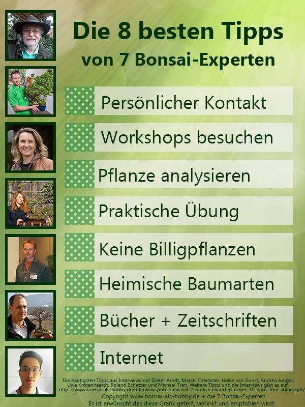 Infografik: Die 8 besten Tipps von 7 Bonsai-Experten