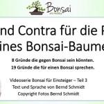 Pro und Contra für die Pflege eines Bonsai-Baumes