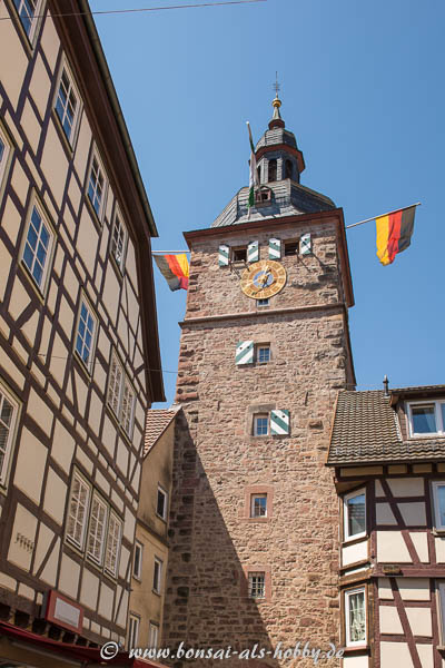 Mainzer Tor in der Marktstrasse in Buchen