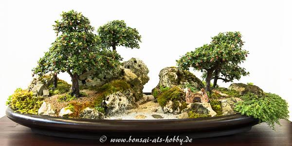 Landschaft mit Zwergmispeln