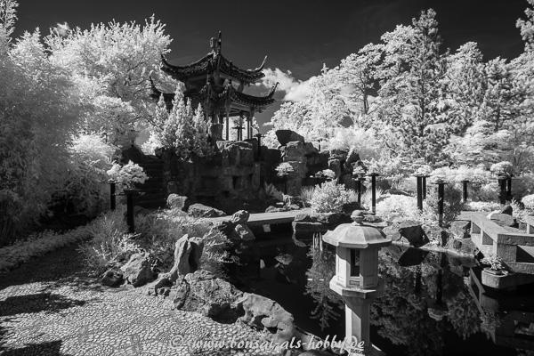 Pagode im chinesischen Garten Stuttgart in Infrarot
