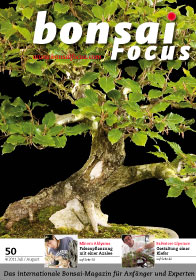 Bonsai Focus Magazin