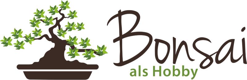 Neues Logo 2014 für den Bonsaiblog