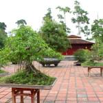 Mit Bonsai im Garten dekorieren © netsuthep - Fotolia.com