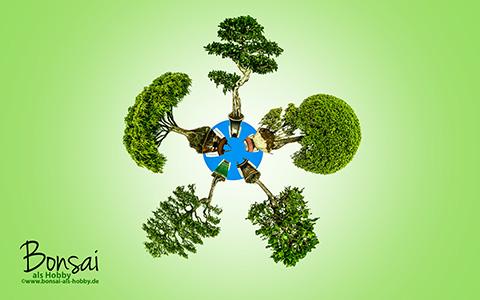 Bonsai Mini Planet zum download als Wallpaper