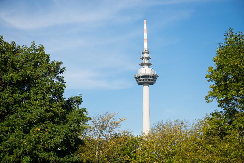 Blick vom Luisenpark in Mannheim auf den Fernsehturm