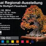 Bonsai Regional-Ausstellung Stuttgart 2014
