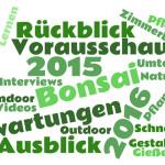Rückblick 2015 - Ziele 2016