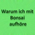 Warum ich mit Bonsai aufhöre?