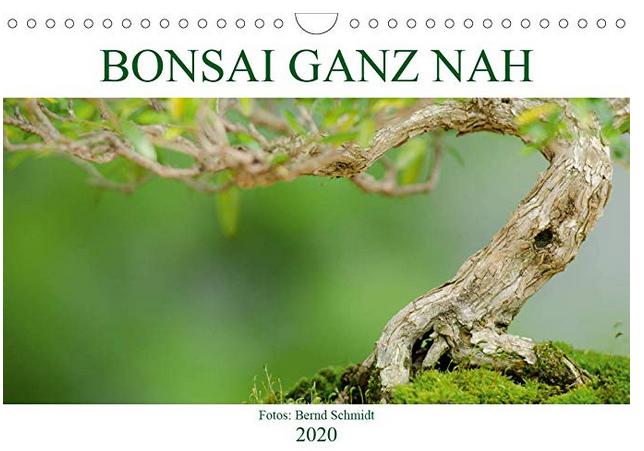 Kalender Bonsai ganz nah