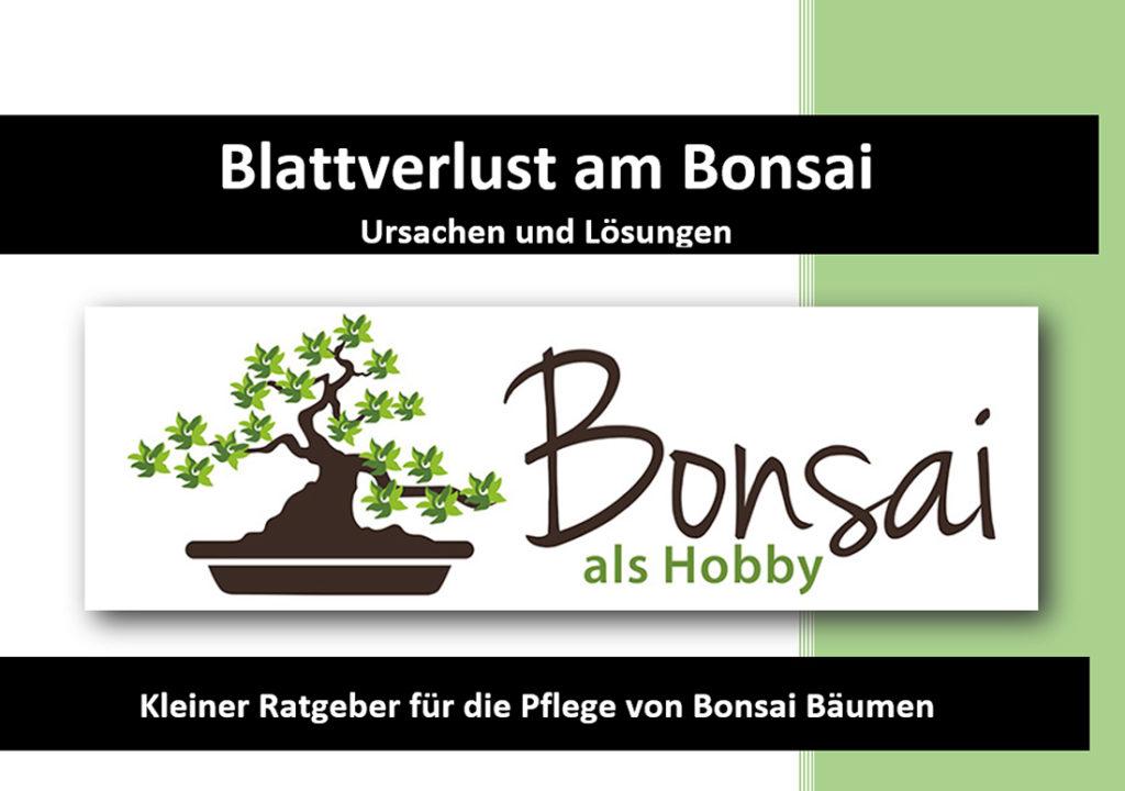 Cover Bonsai eBook